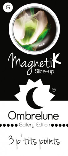 Slice-up Giga / 3PP31