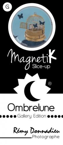 Slice-Up Giga / RD-09
